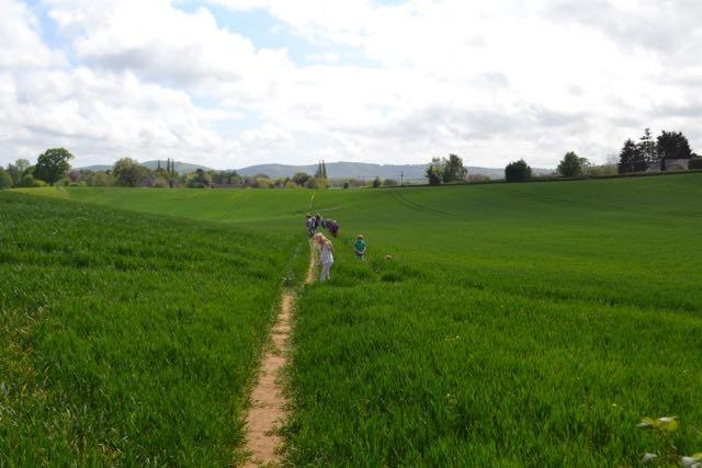 Rogation Walk 2015 007.jpg